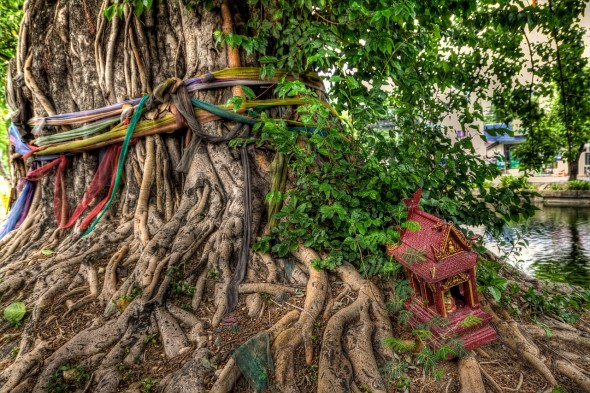 Thai spirits and spirit houses next to a bodhi tree in chiang mai thailand.