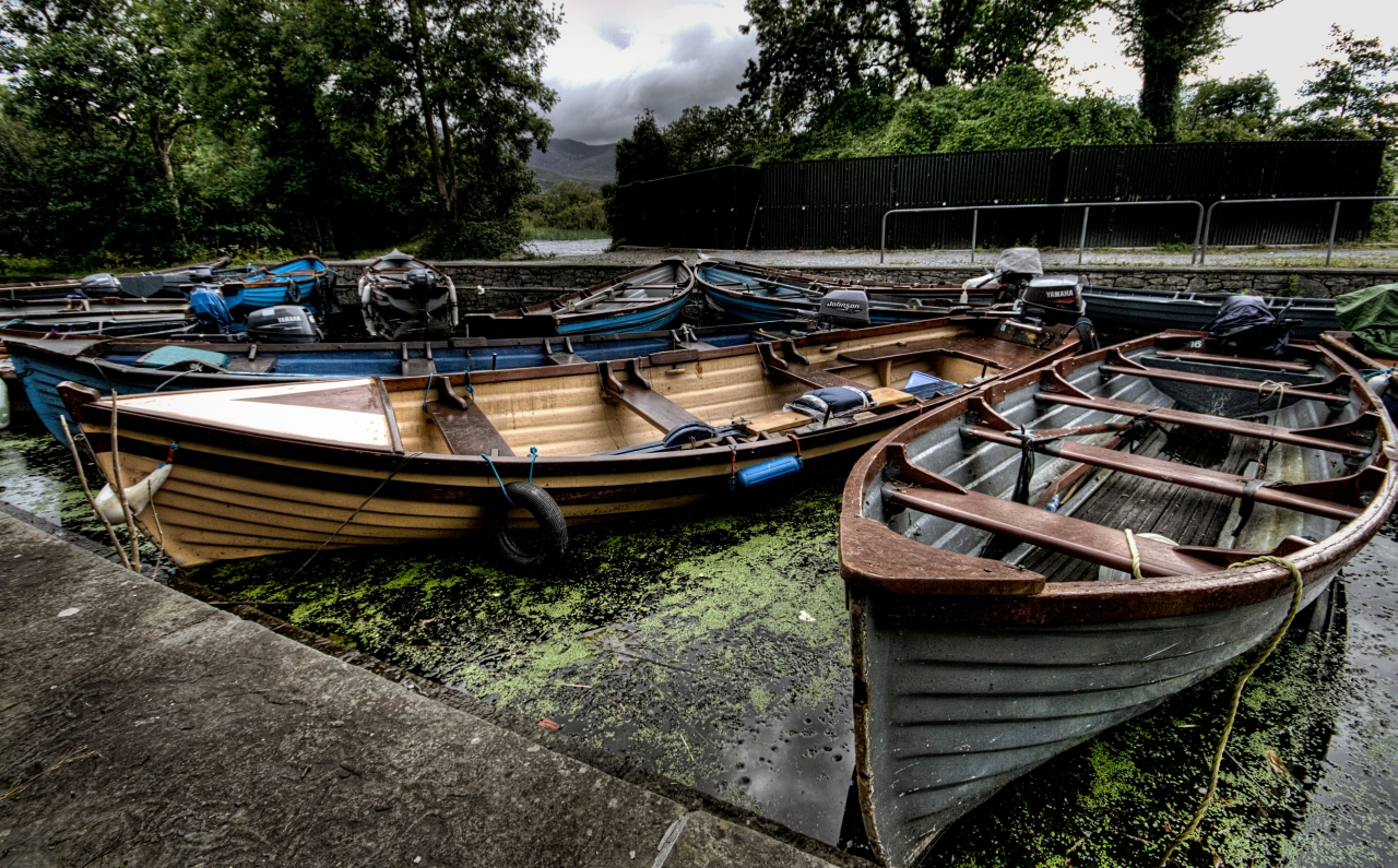 Stranded boats for tourists stranded on a lake with an algae bloom in Killarney, Ireland