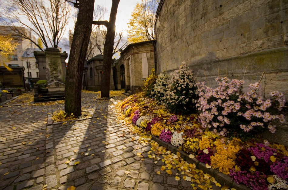 Colorful flowers along the walls of the pere lachaise cemetery during fall in paris france