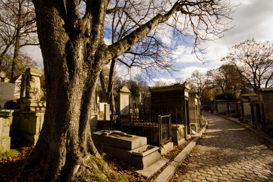 a dead tree with tombstones in an alley during fall in the pere lachaise cemetery in paris