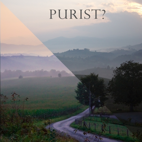 Are you a Purist?