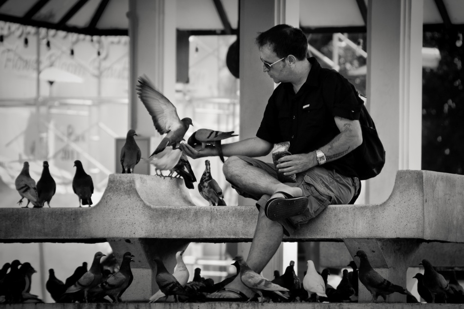 Feeding the Pigeons - Thailand