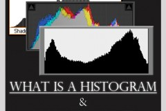 Histogram-Pinterest2