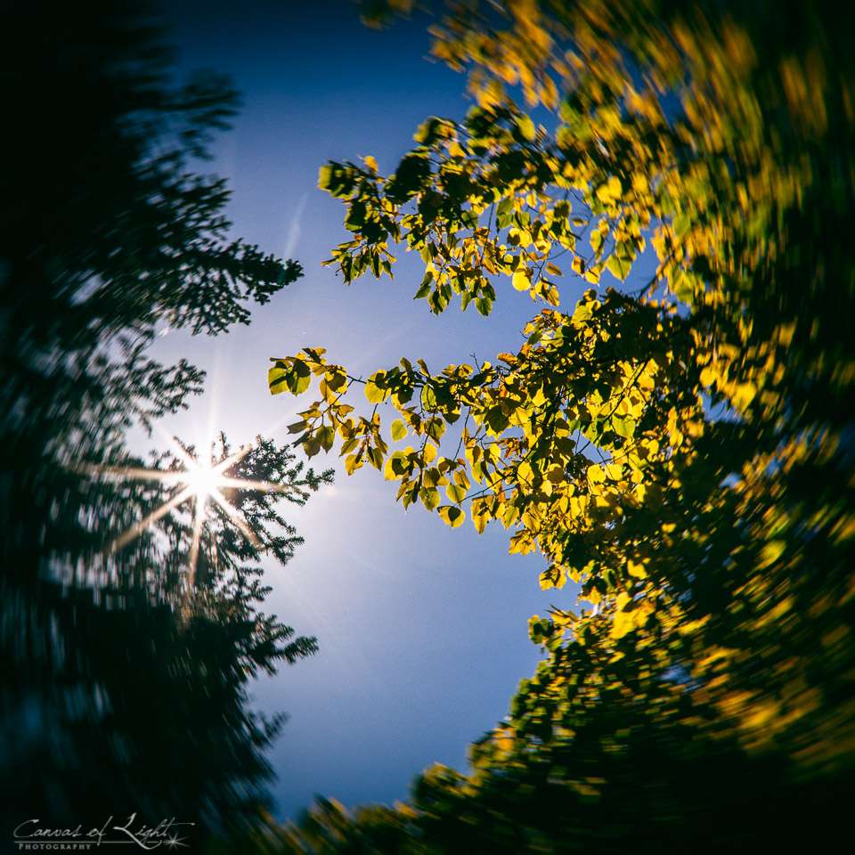 20131020-CoLP-1863-Edit-4-small