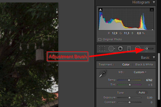 Adjustment Brush Lightroom