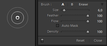 Adjustment Brush Lightroom Options