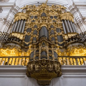 Photo Gallery: Granada Cathedral of Incarnation ~ Spain