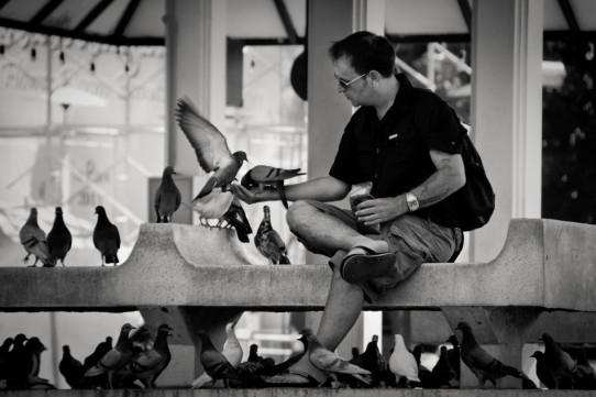 Feeding the Pigeons ~ Thailand