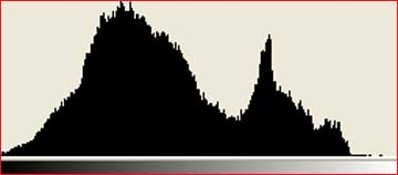 What is this histogram thing?