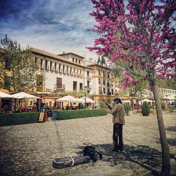 busking in the plaza in Granada