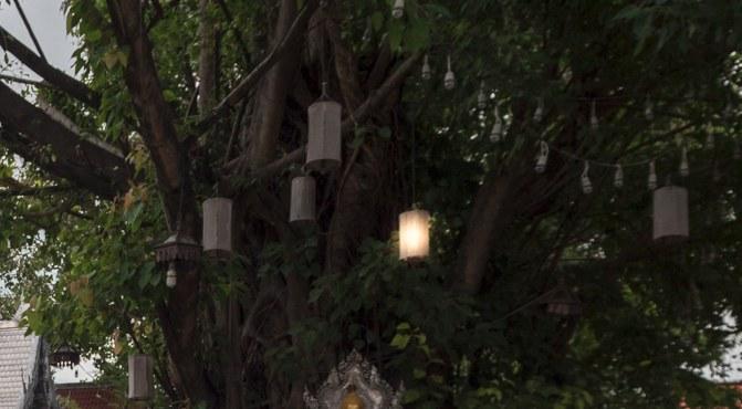 Light in lanterns Lightroom